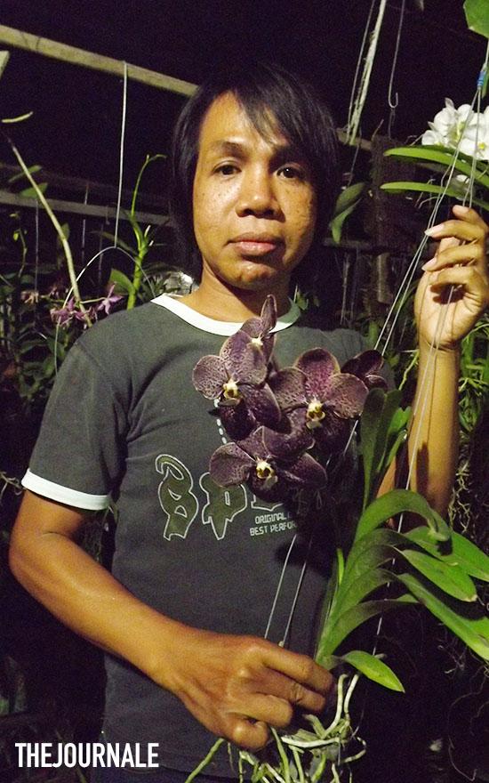 Dedy Adriady penggiat Anggrek Kalimantan